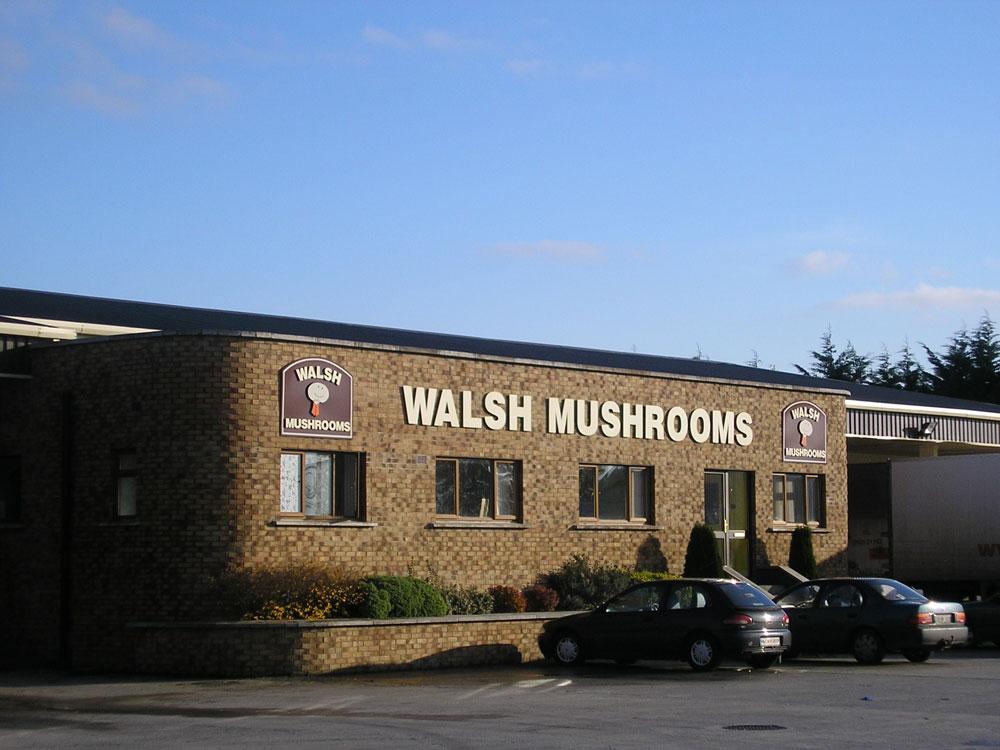 Walsh Mushrooms Ltd